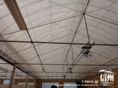 扇風機がたくさん設置された天井
