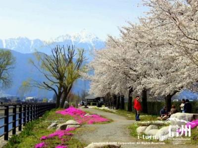 花咲く広場