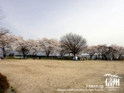 公園の広場