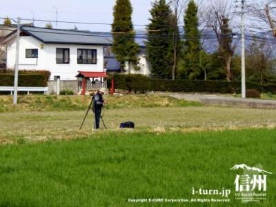 田んぼにカメラマン