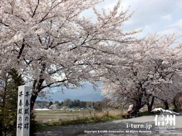 早春賦の碑2