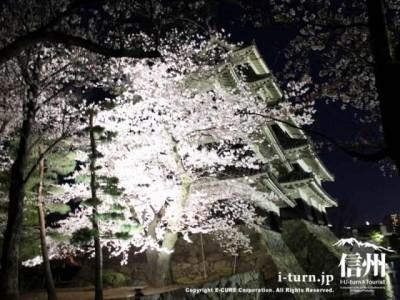 桜の奥に松本城
