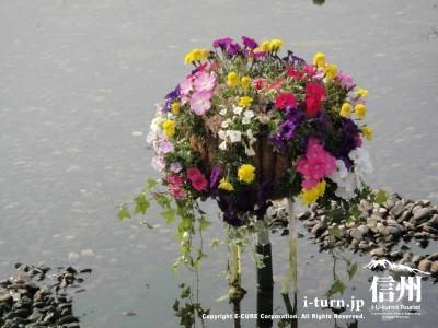 池の中にもお花が
