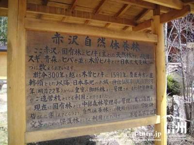成り立ちなど赤沢自然休養林について説明
