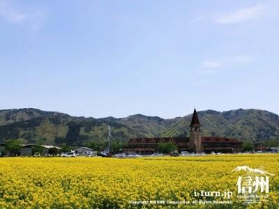 スイス村と菜の花畑