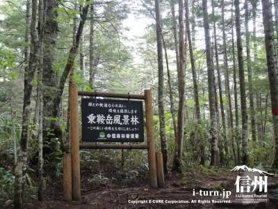 乗鞍岳風景林の看板