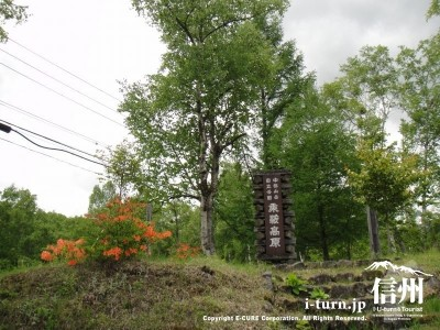 乗鞍高原入口(中部山岳国立公園)