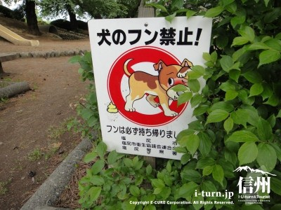 犬のフンは禁止です