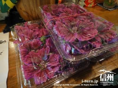 お茶となる花が売ってました