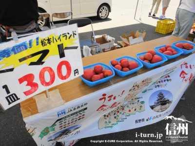 松本ハイランドトマト