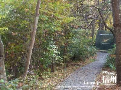 記念館への道