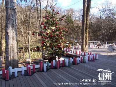 クリスマスシーズンテラス