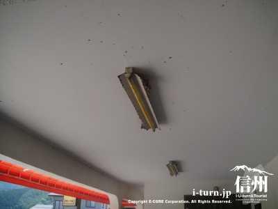 1階駐車場につばめの巣