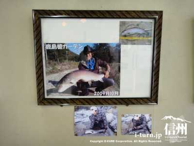 大きなイトウを釣った写真