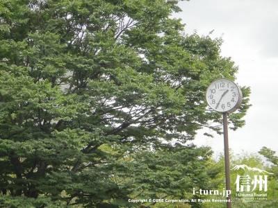 公園内の時計