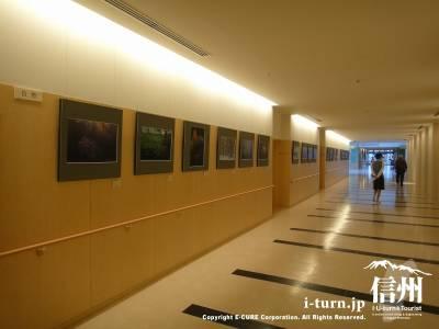 長野市民病院の廊下がギャラリーになっている
