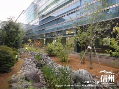 長野市民病院の中庭にある小川