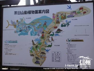 茶臼山動植物園の案内図