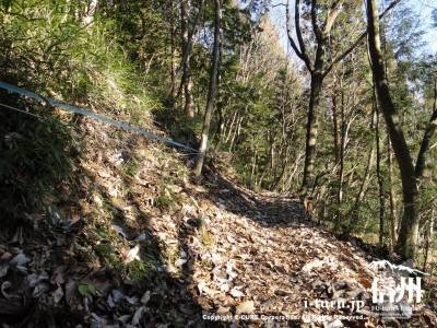 山側に入山禁止のロープ