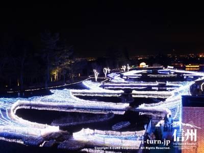 イルミネーションで彩られた池