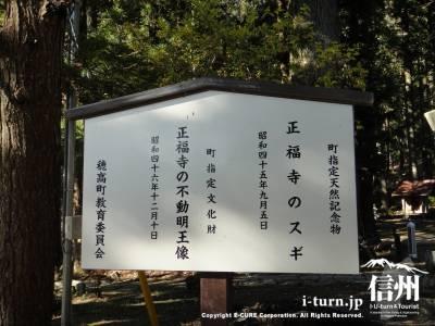 天然記念物と指定文化財の立て札