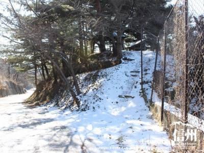 雪が溶けてない階段