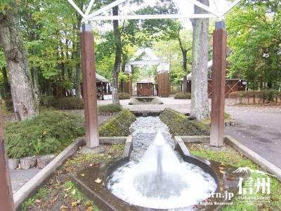 軽井沢タリヤセン塩沢湖・ボート&遊歩道