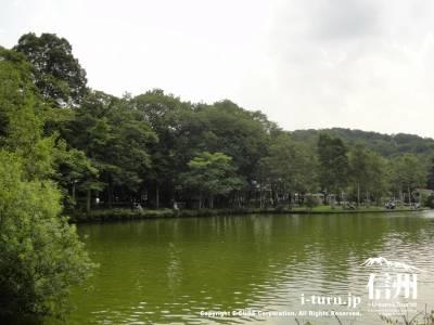 塩沢湖全景Ⅳ