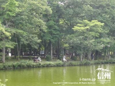塩沢湖・湖畔の木陰Ⅰ