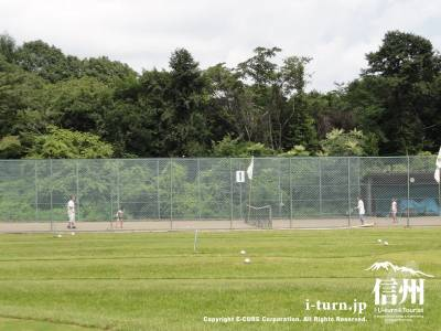 テニスプレー