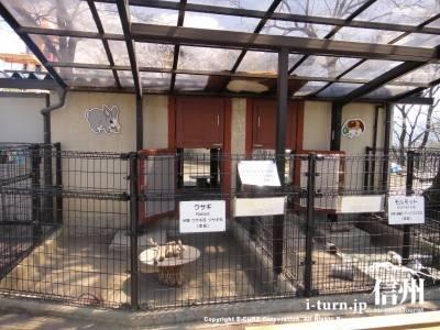 うさぎとモルモットの飼育部屋