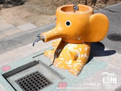 象の水飲み場