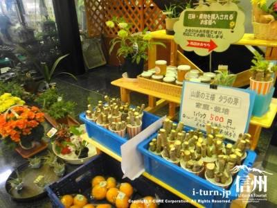 花鉢や果物売り場