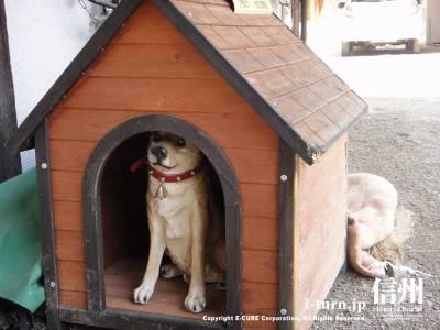 本物ソックリな置物の番犬