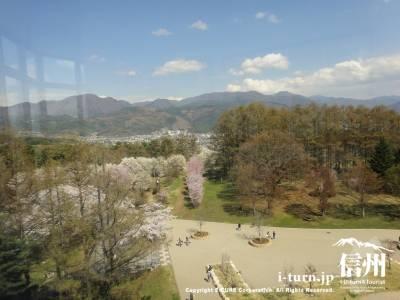 展望台からの公園方向の眺め