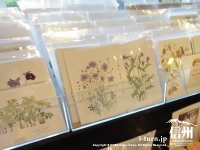 花のポストカード