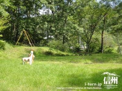 草が生い茂る公園