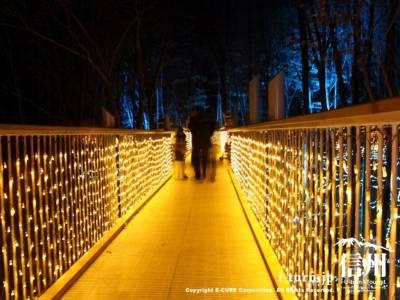 光る空中回廊