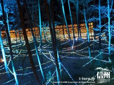 森のパーティというサウンド・イルミ