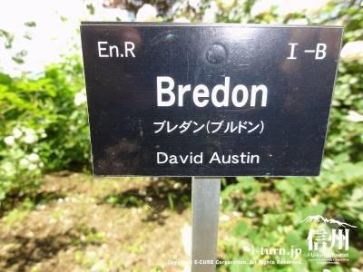Bredon ブレダン(ブルドン)
