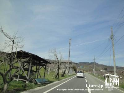 茶臼山の道路