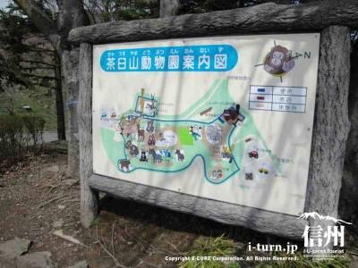 茶臼山動物の全体案内図