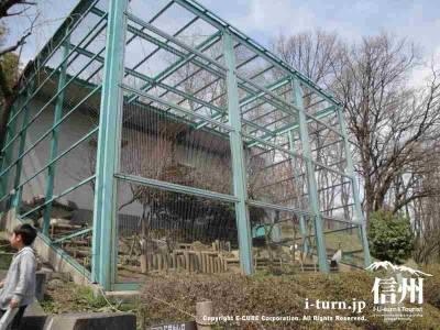 チンパンジーの小屋