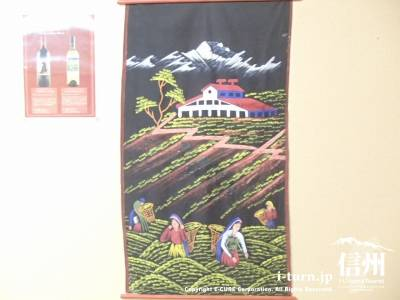 ネパール写真5