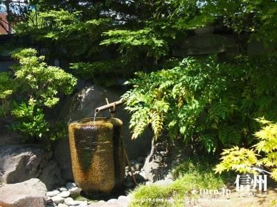 日本庭園の水