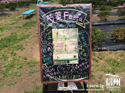 芍薬フェスタの案内看板