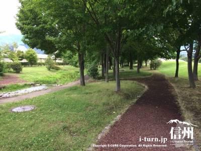 木陰を歩ける小道になっています