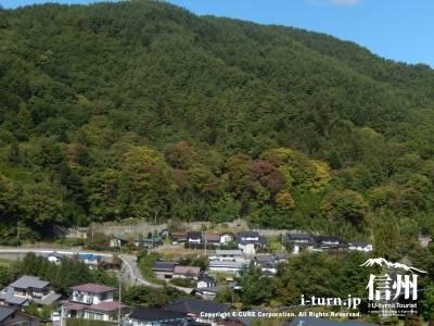 山も少し紅葉してます