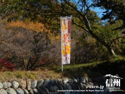 秋祭りののぼり旗が立てられています