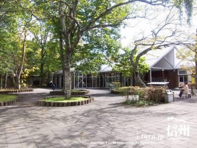 軽井沢タリヤセンのレストランとショップ|塩沢湖を眺めながら|軽井沢町塩沢湖